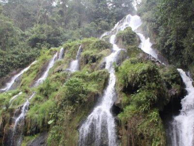 Pereira-hoteles-Bioparque-TermalesSantaRosadeCabal (563)